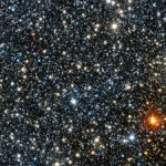 VISTA view of the newly discovered globular cluster VVV CL001 an